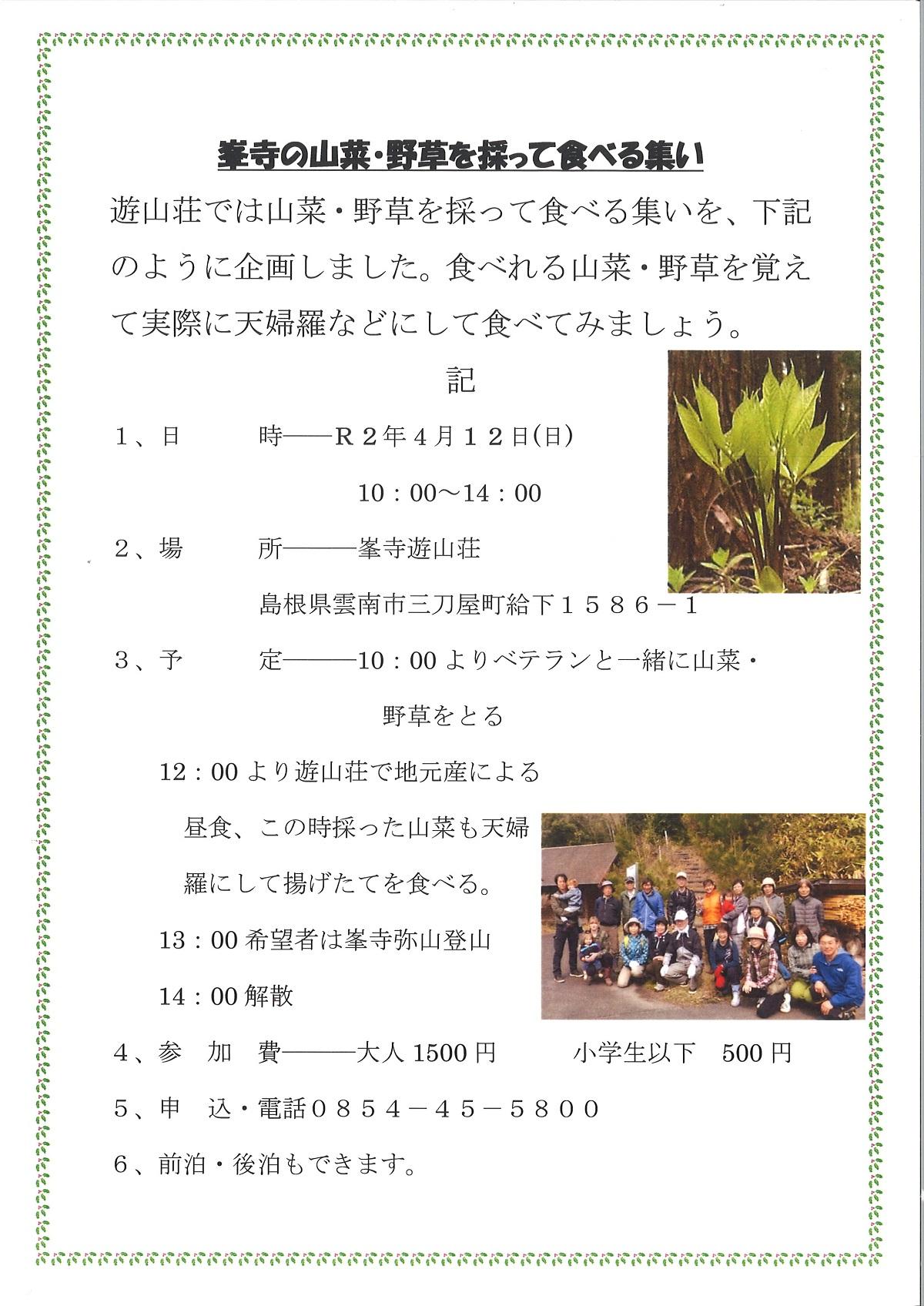 峯寺の山菜・野草を採って食べる集い
