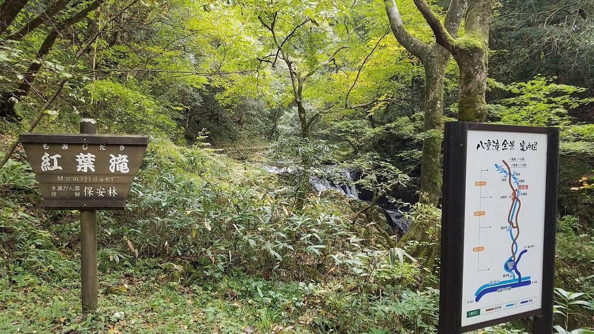 【紅葉情報】八重滝(10/28)
